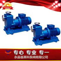 自吸式磁力驅動泵 ZCQ型