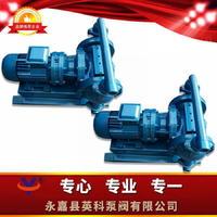 电动隔膜泵 XDBY