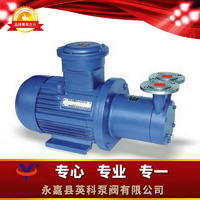 磁力傳動旋渦泵 CWB型