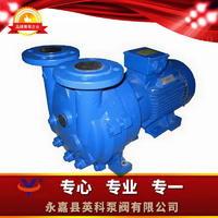 水環式真空泵及壓縮機 2BV系列