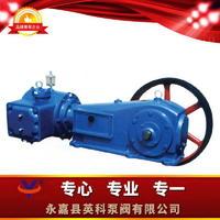 往復式真空泵 W型