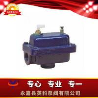 ZP-II排氣閥 ZP-II