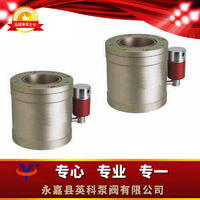 低真空電磁壓差閥 DYC-Q型