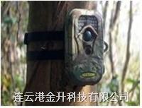 **行货野外动物红外线监测相机SG-660V|连云港取证监控防盗仪可摄像 SG-660V