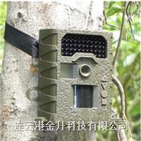 代理夜鹰SG008红外感应相机/红外动植物监控拍摄仪 夜鹰  SG008