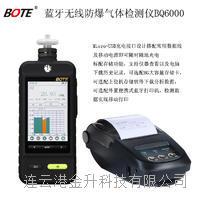 BOTE(博特)泵吸式检测仪甲醇(CH4O)彩屏防爆BQ6000