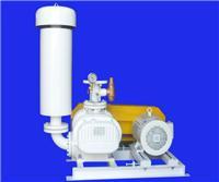 伊旋罗茨真空泵 RSV-50