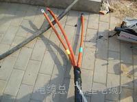 阻燃屏蔽控制电缆ZR-KVVP2,MHYVRP电缆|MHYVRP兰州通信电缆