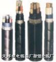 铜芯、铝芯聚氯乙烯绝缘聚钢带铠装聚氯乙烯护套电力电缆 vv,vlv,vv22,vvp22