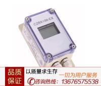 CZBS100-EX场本安显示器