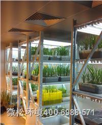 培养架型植物生长室