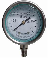 YTN、YTN-B系列耐震压力表