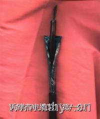 煤矿用信号电缆 MHYVR(PUYVR)、MHYVRP(PUYVRP):规格:1×2 MHYVR(PUYVR)、MHYVRP(PUYVRP):规格:1×2