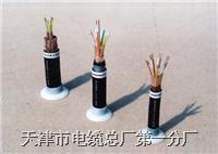 铁路信号电缆、信号电缆、通信电缆  PTYAH PTYA PZYA PTYV PTYY PTY22
