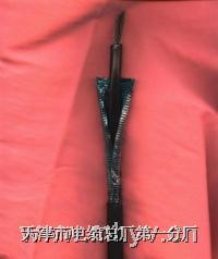 音频电缆ZR-HYA53 HYA53 ZR-HYA53 ZRC-HYA53