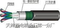 铁路信号电缆-PTYA23-PTYA22-30-33-37-42-44-48-52-56-61*1-(1.0-1.2-1.5) PTYA23-PTYA22-30-33-37-42-44-48-52-56-61*1
