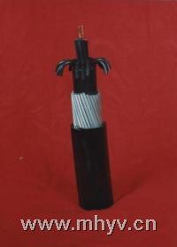 聚乙烯绝缘控制电缆-ZR-KYV;ZR-KYVR;ZR-KYVP;ZR-KYVRP  ZR-KYV