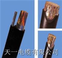 HYAT-100*2*0.5充油电缆生产—天联HYAT-100*2*0.5充油电缆厂家销售 HYAT-100*2*0.5