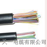 【HYAC -30*2*0.6】自承式电缆HYAC -30*2*0.6电缆拉力,直径,重量,报价,价格在线咨询:0316-5960153 HYAC -30*2*0.6
