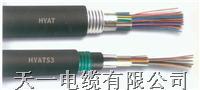 HYA T23电缆 我厂专业生产通信电缆HYAT23  购买我厂HYA T23的通信电缆可享受三包服务。 HYA T23