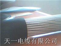 HYA53通信电缆 HYAT53(充油铠装)通信电缆 5X2X0.5  购买我厂的 通信电缆 可享受三包服务。 HYAT53