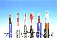 DJVPVP22电缆 我厂专业生产控制电缆 型号大全 购买我厂DJVPVP22的可享受三包服务 DJVPVP22