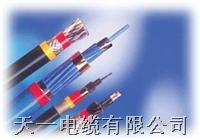DJYPVP电缆 我厂专业生产控制电缆 型号大全 购买我厂DJYPVP的可享受三包服务。 DJYPVP