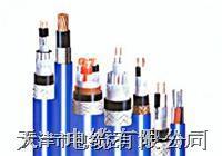 DJYJVP3-22电缆 我厂专业生产计算机电缆 型号大全 购买我厂DJYJVP3-22的可享受三包服务 DJYJVP3-22