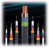 DJVP3V 电缆大全-我厂为您生产优质的-DJVP3V电缆-价格咨询 DJVP3V