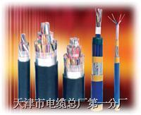 HYA53通讯电缆|HYA53通信电缆 HYA53通讯电缆|HYA53通信电缆