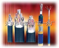 局用通信电缆HJVVP-20*2*0.5 局用通信电缆HJVVP-20*2*0.5