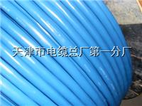 GSKJ-HRPVSP 2*1.0通讯电缆型号 GSKJ-HRPVSP 2*1.0通讯电缆型号