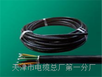 (HYA)市内通信电缆HYA_国标 (HYA)市内通信电缆HYA_国标