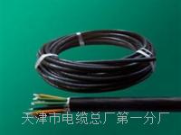 5芯RVVP屏蔽电缆_电缆专卖 5芯RVVP屏蔽电缆_电缆专卖
