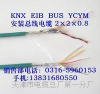 专用呼叫电缆HJYVPZR/SA基本用途 专用呼叫电缆HJYVPZR/SA基本用途