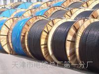 HYA通信电缆天联公司网络营销部 HYA22铠装电缆天联牌厂家
