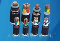 防爆屏蔽电缆国标型号厂家 防爆屏蔽电缆国标型号厂家