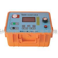 TE2535数字绝缘电阻测试仪
