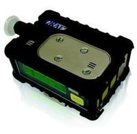RAE气体检测仪 QRAE II