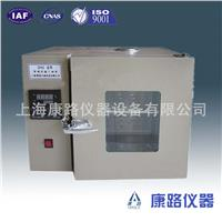 DHG-9013A台式干燥箱/鼓风干燥箱 DHG-9013A