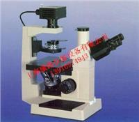 三目倒置生物显微镜生产报价 37XB