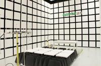 射频辐射抗扰度(RS) 射频辐射抗扰度(RS)