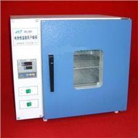 DHG-9303-3SA远红外鼓风干燥箱 鼓风干燥箱 真空干燥箱