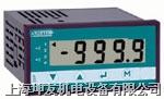 智能数显表 ADIP300