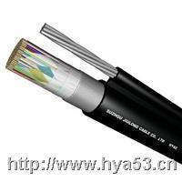索道通信电缆 hyac