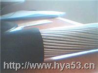 钢丝铠装通信电缆 HYAT33  20*2*0.5
