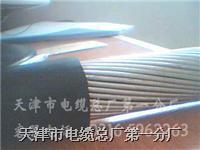 钢丝铠装井筒信号电缆 HYA33 HYAT33 WDZ-HYA53 HYY33 HYYT33 HYY33