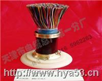 HYA HYV HYV22 HYA53通信电缆 HYA HYV HYV22 HYA53