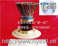 HYA22 5*2*0.4 铠装通信电缆HYA22 HYA22 5*2*0.4  HYA22