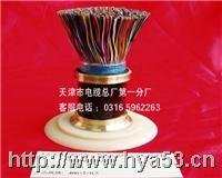 HYA22 5*2*0.5铠装通信电缆HYA22 HYA22 5*2*0.5 HYA22